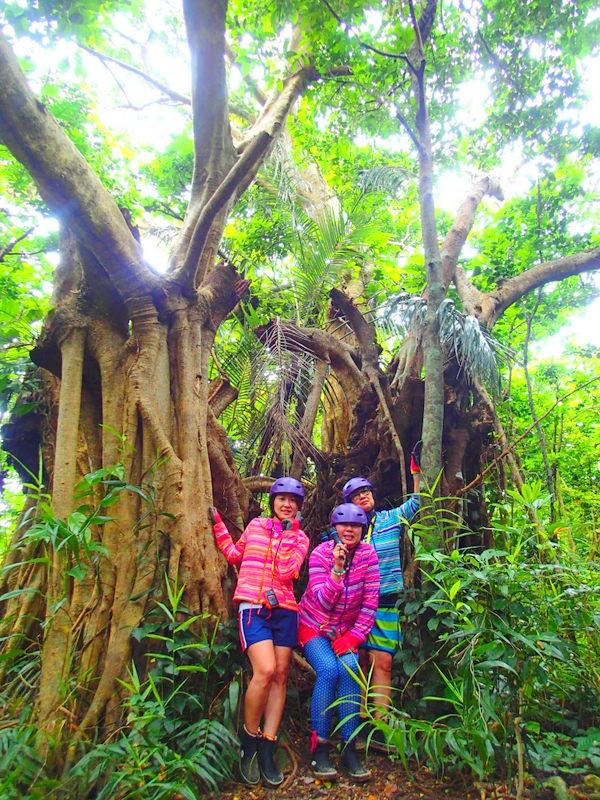 夏休み旅行は人気のアクティビティツアー体験を、西表島ケンガイドがおすすめするカヌーツアー&トレッキング、ジャングル探検滝巡りで大自然で遊ぼう!