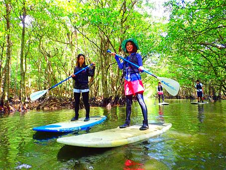 西表島で人気のSUPツアー体験〜島旅で時間を贅沢に使おう〜🌴
