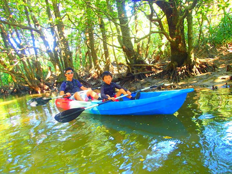 西表ツアーおすすめ家族旅行、西表島人気のカヌーでマングローブを漕いでジャングル探検トレッキングで秘境の滝巡り、午後からケイビングで神秘の鍾乳洞探検。大自然のエナジーを体感しよう。石垣島から日帰り参加もOK!です。