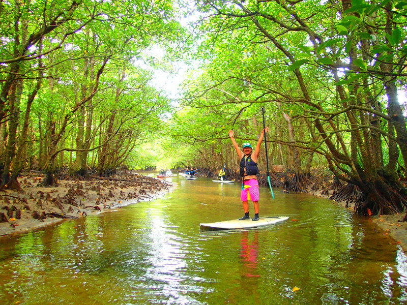 沖縄旅行で石垣島・西表ツアーで遊ぼう!人気のSUP・カヌー・トレッキングで遊びは自由自在!アドベンチャーボートでパナリ島シュノーケリング・シュノーケルなど、西表ツアー人気のケンガイドがおすすめする西表島旅行で人気の観光アクティビティツアーで遊びを満喫!
