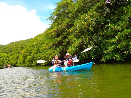 青空の下でマングローブカヌー体験🛶