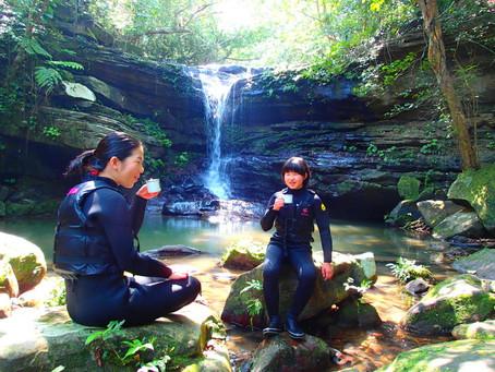 春休み旅行・西表島「ようこそ、癒しのジャングルカフェへ」