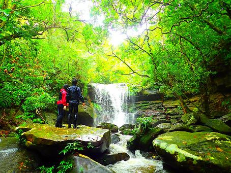 島旅で秘境の滝へ行ってみよう〜