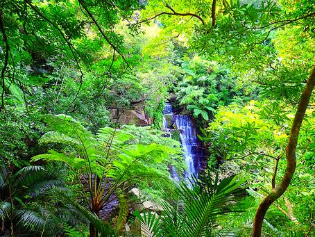 島旅で秘境の滝へ〜🌴