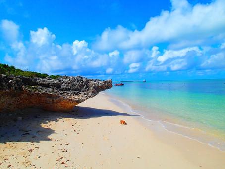 楽園パナリ島へ〜西表島シュノーケリング🐠