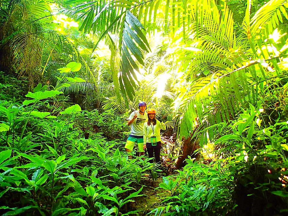 西表SUPツアー・石垣島旅行で西表おすすめ由布島観光ツアー人気のケンガイドがおすすめする秘境パワースポット巡り・女子旅行・家族旅行・学生旅行アクティビティツアー・SUP・サップ&トレッキング秘境の滝巡り!人気観光スポット由布島で南国を満喫しよう。