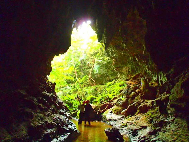 西表・石垣島旅行で西表おすすめツアー人気のケンガイドがおすすめする人気の西表カヌーでマングローブ&ジャングル探検トレッキング滝巡り!アドベンチャーボートでパナリ島シュノーケリングでニモに会おう!