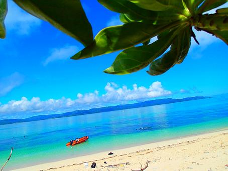 パナリブルーの海で泳ぎたい🏖西表島シュノーケル