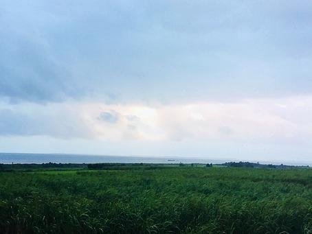 西表島の今日の天気予報〜🌥