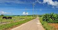 小浜島(こはまじま):Kohama Island 八重山の中央、周囲16.6km、面積7.82平方キロメートル、人口約580人。島の中央にある「大岳」からの眺めは360度の壮大な景色でよく晴れた日には与那国以外の八重山の全ての8つの島が青い海に浮かぶのを見ることができます。小浜島は藍染め【伝統的な藍色の染物)が有名です。島の人々は伝統的な神行事の時は、手作業で染めた深い藍色の着物を着ます。西表島大原港から1日1便定期船があります。