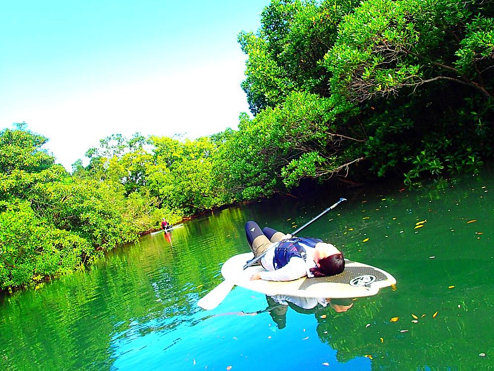 西表島ヨットクルーズツアー・石垣島旅行でおすすめのカタマランヨットでパナリ島シュノーケルツアー、ケンガイドがおすすめするパナリ島ヨットクルーズ&カヌー・SUP秘境の滝巡り・女子旅行・家族旅行・学生旅行アクティビティツアーで南国を満喫しよう。