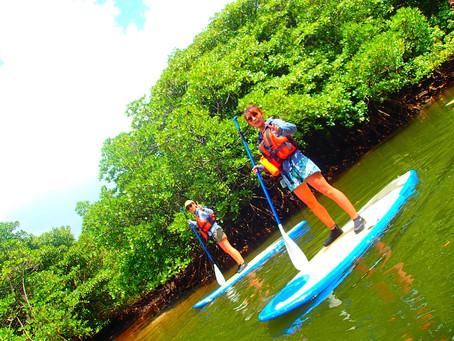 大自然の中でNatural fitness✨西表島SUP