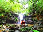 石垣島旅行で人気の西表島観光アクティビティで半日カヌーツアー体験、西表島ケンガイドおすすめ半日カヌーツアーで女子旅行・家族旅行・学生旅行を満喫!カヌーでマングローブ&ジャングル探検で秘境パワースポット滝巡り!本物の島旅アウトドア体験を。