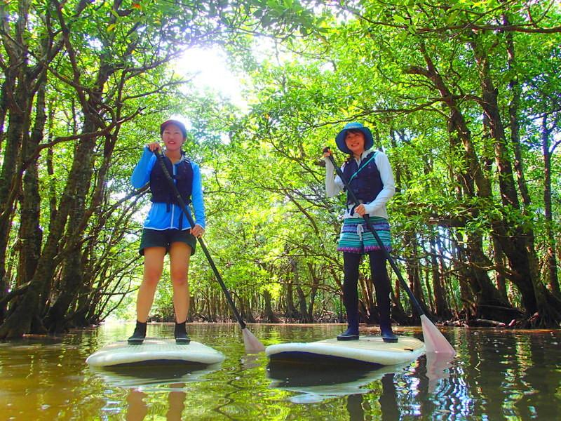 おすすめ離島ツアー沖縄旅行で人気の離島、石垣島・小浜島・西表島を格安ツアーで遊ぼう!人気の島内観光スポット川平湾・平久保灯台・竹富島を観光した後は、石垣島・西表島ツアーランキング人気のケンガイドがおすすめするアクティビティツアー体験をご紹介、カヌー&由布島観光や SUP&ジャングル探検、アドベンチャーボートで行くパナリ島シュノーケル・星砂の浜シュノーケリングなど家族旅行・女子旅をお得な割引プランで遊びつくそう!