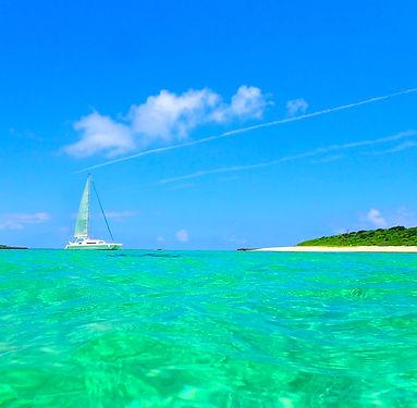 世界遺産 西表島