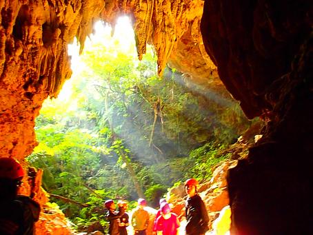 黄金に輝く鍾乳洞探検してみよう!西表島ケイビングツアー