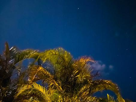 星に願いを⭐️西表島