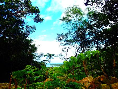 島旅トレッキングで絶景を観に行こう〜🌴