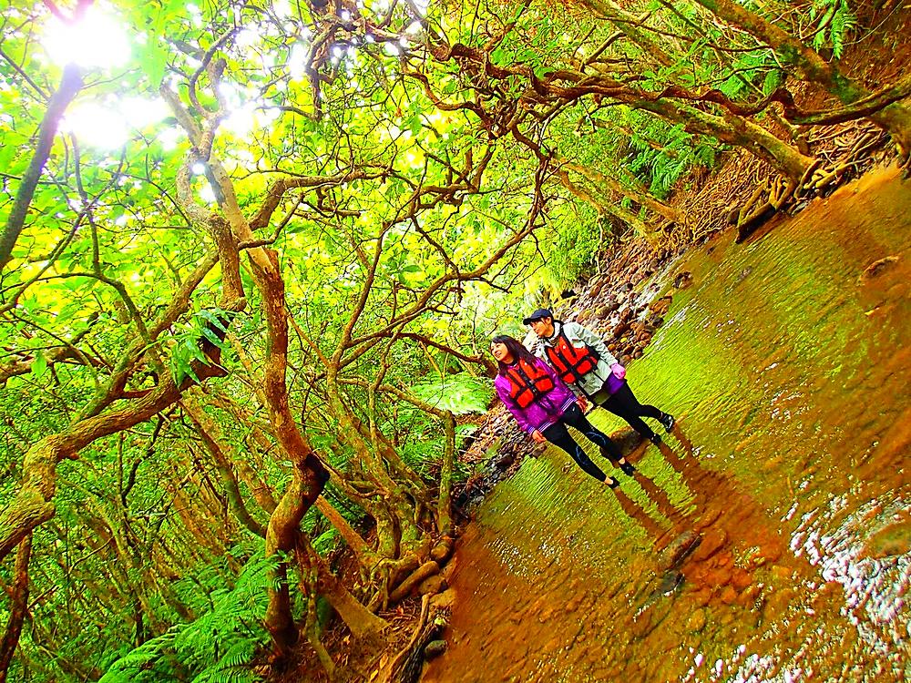 石垣島旅行・西表島旅行で人気No1のカヌーツアーで最高の島旅を!ケンガイドおすすめカヌー秘境パワースポット巡りやケイビングなど遊びは自由自在!女子旅行・学生旅行・家族旅行で観光アクティビティカヌー体験を、西表島でカヌー遊びを満喫しよう。