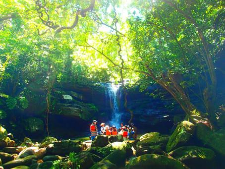 秘境の滝巡り〜西表島SUP