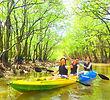 西表ツアーおすすめ女子旅行・卒業旅行人気のSUPでマングローブを漕いでジャングル探検トレッキングで秘境パワースポット滝巡り、午後からトレッキングで秘境の滝を目指します。大自然のエナジーを体感しよう。石垣島から日帰り参加もOK!です。