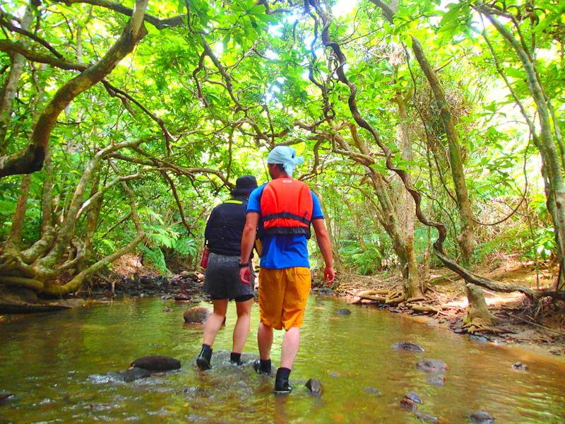 沖縄旅行に行くなら人気の格安ツアーで離島、石垣島・西表島で遊ぼう!レンタカーで川平湾や平久保灯台、由布島観光をした後は、石垣島・西表島で人気のアクティビティツアー体験を、ツアーランキングイン機のケンガイドがおすすめするカヌー・SUP・スタンドアップパドルボードでジャングル探検滝めぐり&アドベンチャーボートで行くパナリ島シュノーケリング・星砂の浜シュノーケルで石垣島・西表島を遊びつくそう!