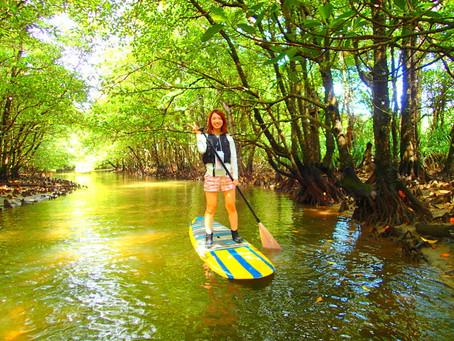 女子旅でおすすめ島旅SUP滝巡り〜西表島