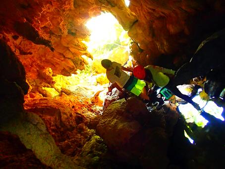 西表島で人気のアクティビティツアー鍾乳洞探検してみよう〜🌟