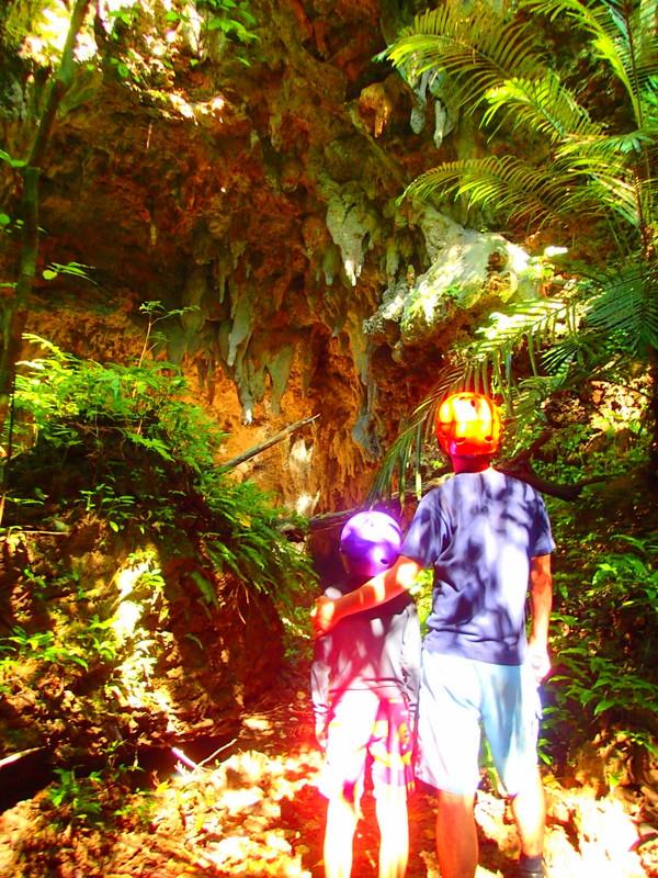 西表ツアーおすすめ人気のSUPでマングローブを漕いでジャングル探検トレッキングで秘境の滝巡り、午後からトレッキングで秘境の滝を目指します。大自然のエナジーを体感しよう。石垣島から日帰り参加もOK!です。