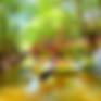 西表島おすすめアクティビティツアー人気の西表島ケンガイドで離島・八重山旅行を遊ぶ・石垣島、西表島観光アクティビティツアーSUP・カヌー&トレッキング滝巡りやパナリ島シュノーケリング・バラス島シュノーケルツアーなど西表島旅行で離島を遊び尽くそう!