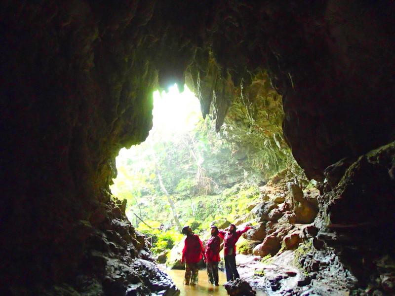 西表島旅行・トレッキングツアー