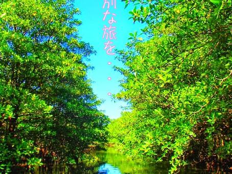 沖縄旅行「西表島・今日のお天気~4/22(fri)」