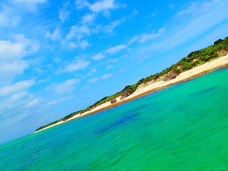 楽園パナリ島へ行ってみよう🌴八重山旅行・西表島おすすめアクティビティ