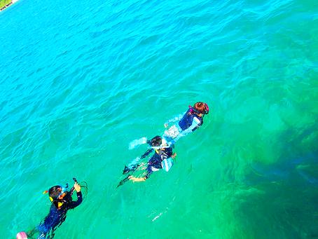 楽園パナリ島でシュノーケル・ヨットクルーズ・西表島シュノーケリング