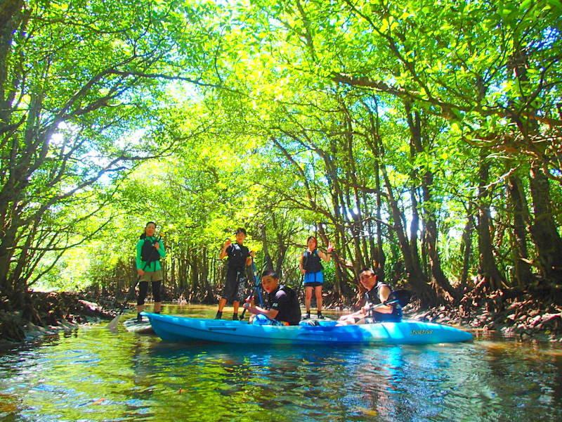 女子旅応援プラン!夏の休み格安離島ツアーで石垣島・竹富島・西表島旅行で遊ぶなら、西表島ツアーランキング人気のケンガイドがおすすめする観光スポット・アクティビティツアー体験を、人気のSUP・カヌーでマングローブをのんびり漕いで、トレッキングでジャングル探検、アドベンチャーボートでパナリ島シュノーケルツアーをお得な割引プランで開催中!家族旅行割引プランやお得な格安ツアー離島情報が満載です!石垣島旅行で最高の旅を。