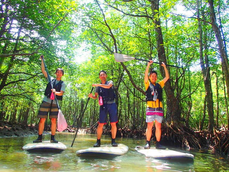 西表島ツアーランキング人気の西表島ケンガイドが石垣島・西表島で人気のアクティビティツアー体験をご紹介、カヌー・SUP・スタンドアップパドルボードでジャングル探検滝めぐりやキャニオニングでアドベンチャー体験を、パナリ島シュノーケルで南国を遊びつくそう!