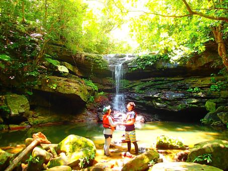 秘境の滝でエナジーチャージ・西表島アクティビティツアー