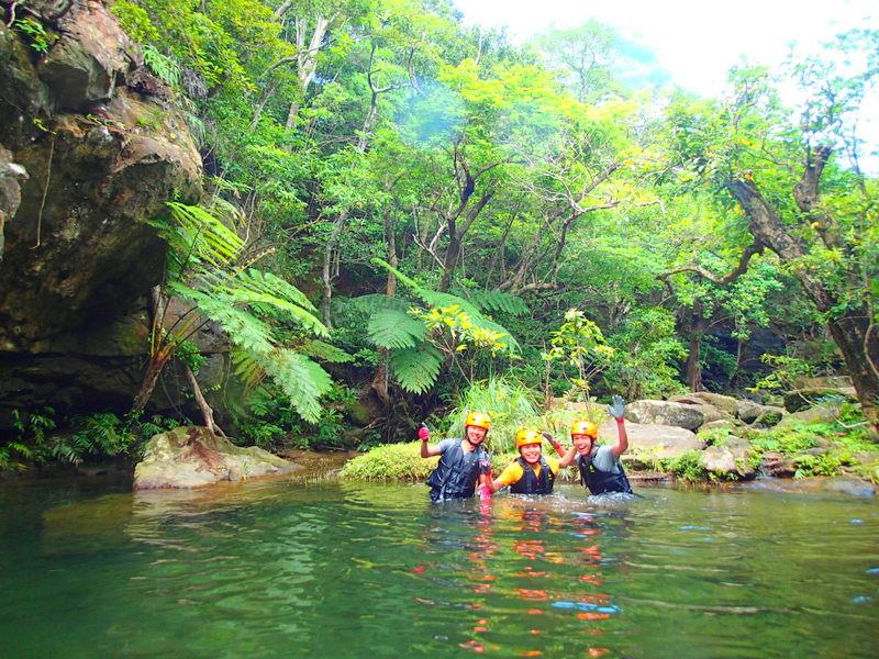 夏休みの家族旅行で石垣島・西表島で遊ぶなら、西表島ケンガイドがおすすめする人気のアクティビティツアー体験、マングローブをカヌーやSUP・スタンドアップパドルボードでのんびり漕いで由布島観光やジャングル探検、トレッキング滝巡りツアーで遊びつくそう!