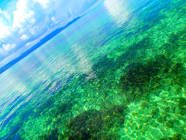 パナリ島でエメラルドブルーの海で泳ごう🏖八重山諸島・パナリ島シュノーケルツアー