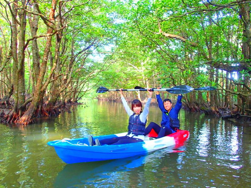 西表ツアーおすすめ家族旅行・人気の西表カヌーでマングローブを漕いでジャングル探検トレッキングで秘境の滝巡り、午後からケイビングで神秘の鍾乳洞探検。大自然のエナジーを体感しよう。石垣島から日帰り参加もOK!です。