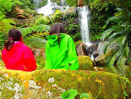 西表島ツアー・秘境ゲータの滝巡り