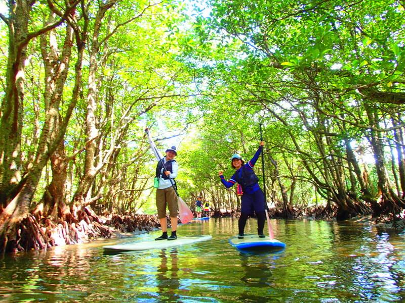 夏休み旅行で石垣島・西表島旅行をするならケンガイドがおすすめする人気のアクティビティツアー体験を!マングローブSUP・スタンドアップパドルボード、トレッキングでジャングル探検滝巡り&アドベンチャーボートで行く南国の楽園パナリ島シュノーケルで思いっきり遊ぼう!