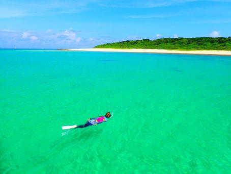 夏の人気ツアー楽園パナリ島シュノーケル