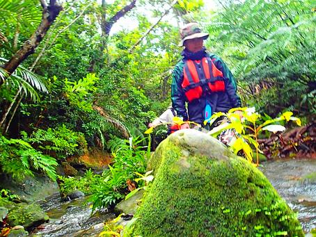 島旅で秘境の滝巡りへ・トレッキングツアー