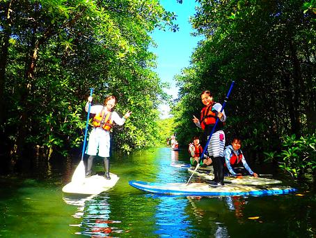 島旅SUP・サップで大自然へ出かけよう。八重山旅行・西表島おすすめアクティビティ