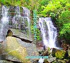 西表カヌーツアー・石垣島旅行で西表おすすめツアー人気のケンガイドがおすすめする秘境パワースポット巡り・女子旅行・家族旅行・学生旅行アクティビティツアー・カヌーでマングローブ&ジャングル探検トレッキング滝巡り!アドベンチャーボートでパナリ島シュノーケリングで南国を満喫しよう。