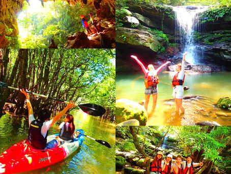 冬のおすすめ!マングローブカヌー秘境の滝巡り&鍾乳洞探検・ケイビング
