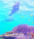西表ツアー・石垣島旅行で西表おすすめツアー人気のケンガイドがおすすめする秘境パワースポット巡り・女子旅行・卒業旅行アクティビティツアー・SUPでマングローブ&ジャングル探検トレッキング滝巡り!アドベンチャーボートでパナリ島シュノーケリングで南国を満喫しよう。