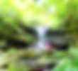 西表・石垣島旅行で西表おすすめツアー人気のケンガイドがおすすめする秘境パワースポット巡り・女子旅行・家族旅行アクティビティツアー・SUPでマングローブ&ジャングル探検トレッキング滝巡り!星砂の浜シュノーケリングでニモに会おう!
