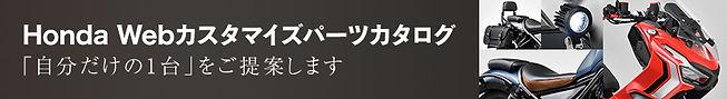 Webカスタマイズカタログ.jpg